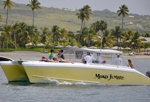 Blue Water Safaris 3.5 Hour Private Power Catamaran  Experience