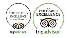 Our TripAdvisor Page