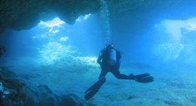 Guided Dive Tours