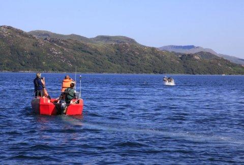 Self Dive Boat Hire